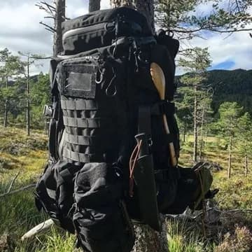 Pack in the woods